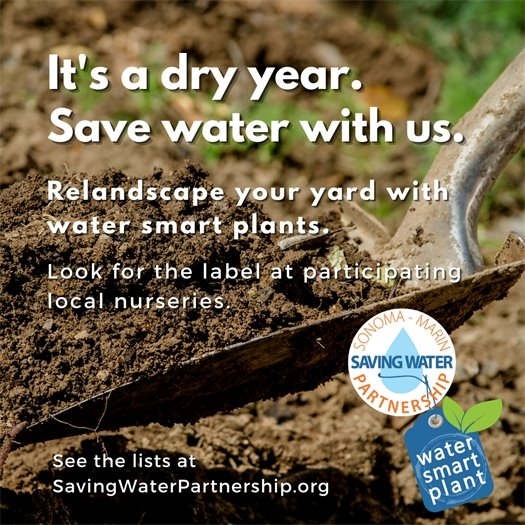 It's a dry year. Save water with us.