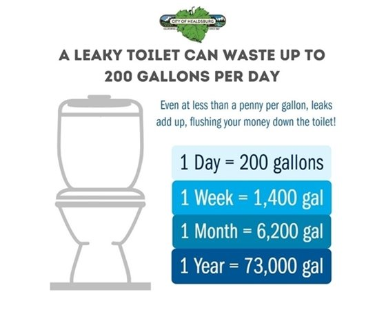 A leaky toilet can waste up to 200 gallons a day