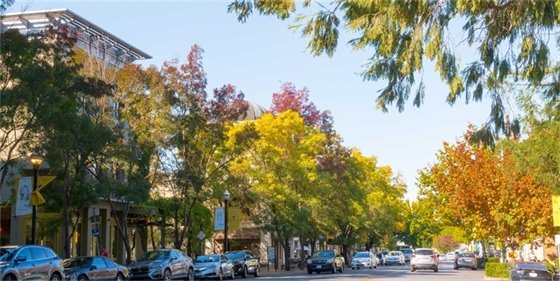 Image of Downtown Healdsburg