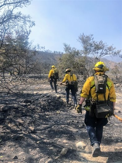Firefighters cleaning up Apple Fire