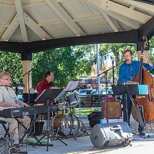 Picnic in the Plaza | Healdsburg, CA - Official Website