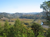 Russian River Overlook View